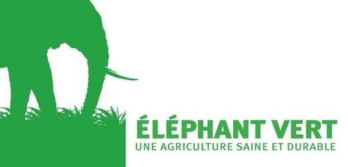 logo Elephant Vert